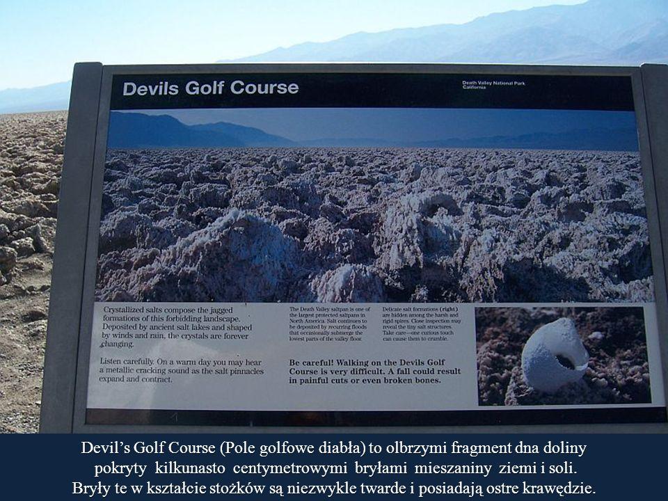 pokryty kilkunasto centymetrowymi bryłami mieszaniny ziemi i soli.