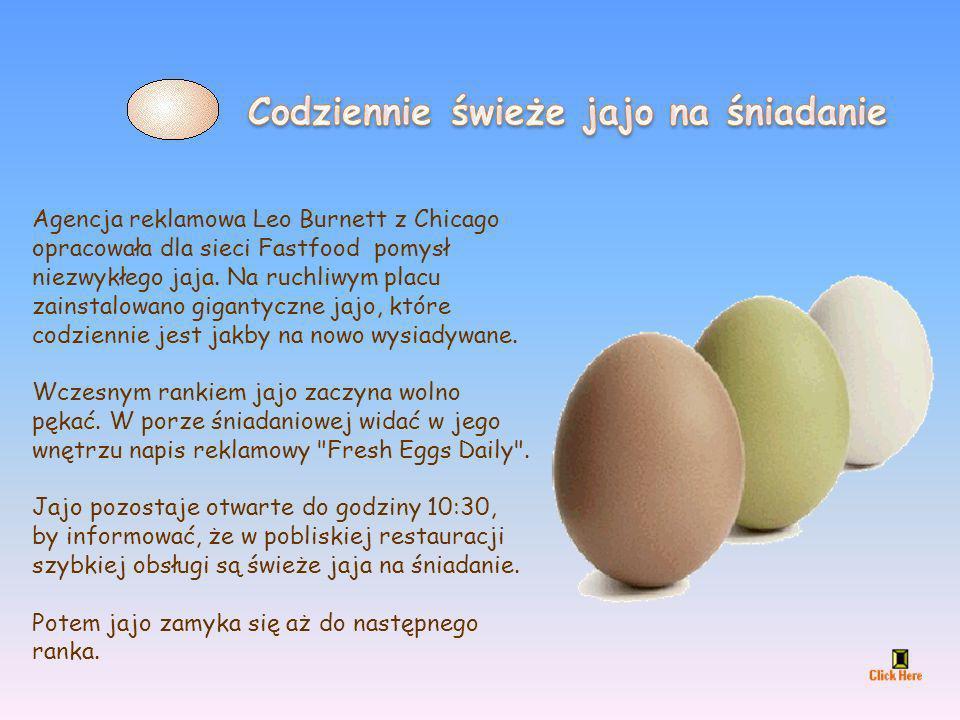 Codziennie świeże jajo na śniadanie