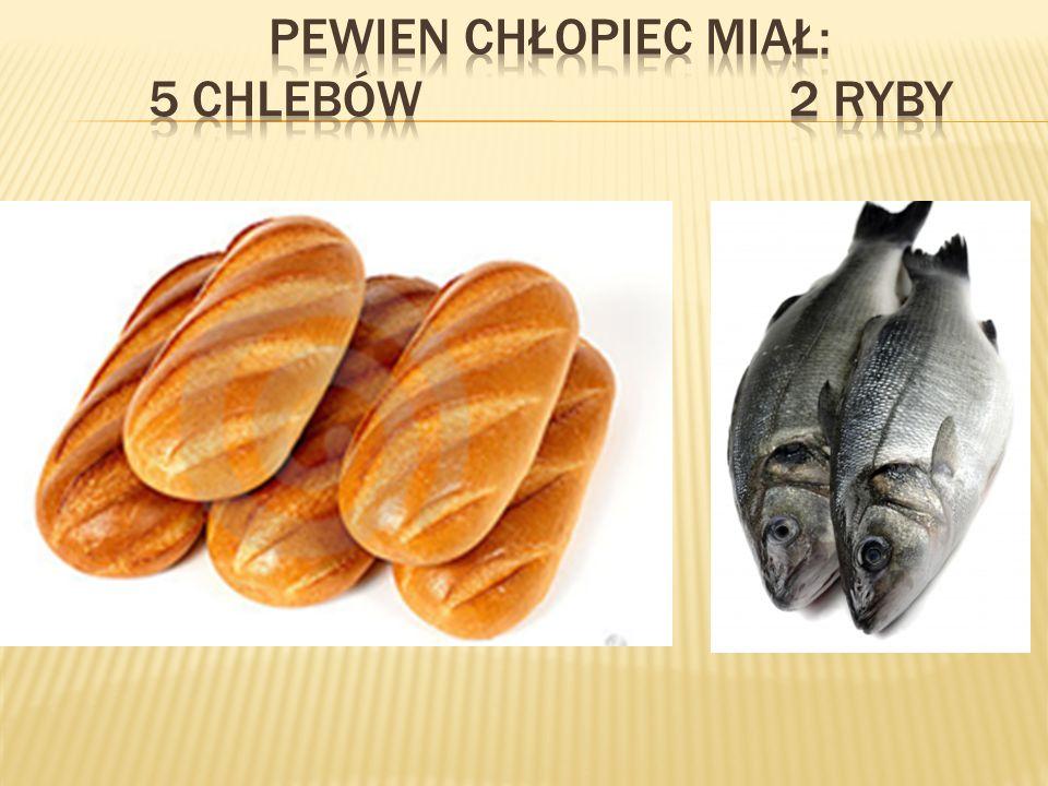 PEWIEN CHŁOPIEC MIAŁ: 5 chlebów 2 ryby