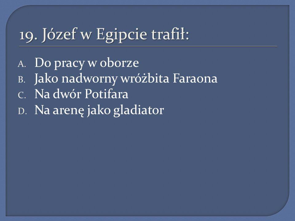 19. Józef w Egipcie trafił: