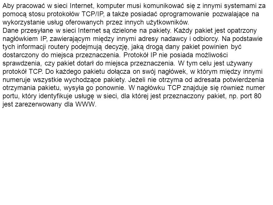 Aby pracować w sieci Internet, komputer musi komunikować się z innymi systemami za pomocą stosu protokołów TCP/IP, a także posiadać oprogramowanie pozwalające na wykorzystanie usług oferowanych przez innych użytkowników.