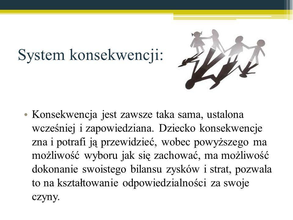 System konsekwencji:
