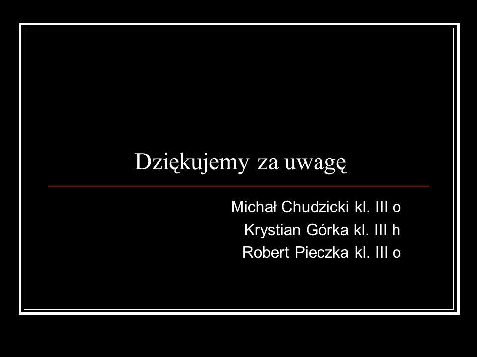 Dziękujemy za uwagę Michał Chudzicki kl. III o