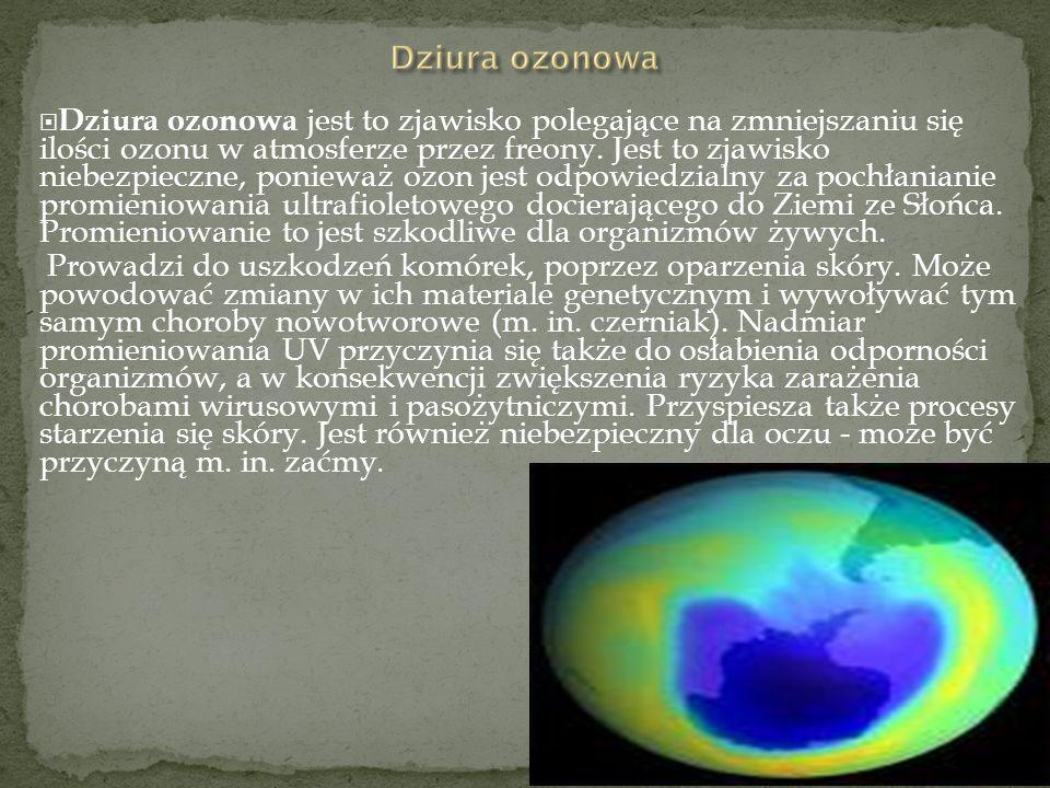 Dziura ozonowa jest to zjawisko polegające na zmniejszaniu się ilości ozonu w atmosferze przez freony. Jest to zjawisko niebezpieczne, ponieważ ozon jest odpowiedzialny za pochłanianie promieniowania ultrafioletowego docierającego do Ziemi ze Słońca. Promieniowanie to jest szkodliwe dla organizmów żywych.