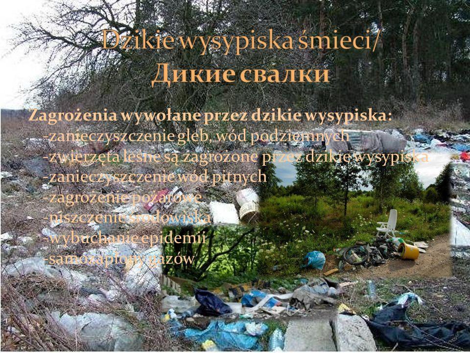 Dzikie wysypiska śmieci/ Дикие свалки