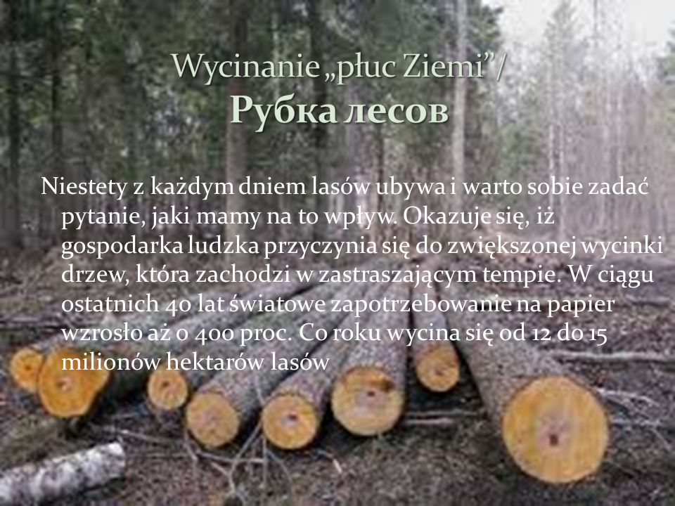 """Wycinanie """"płuc Ziemi / Рубка лесов"""