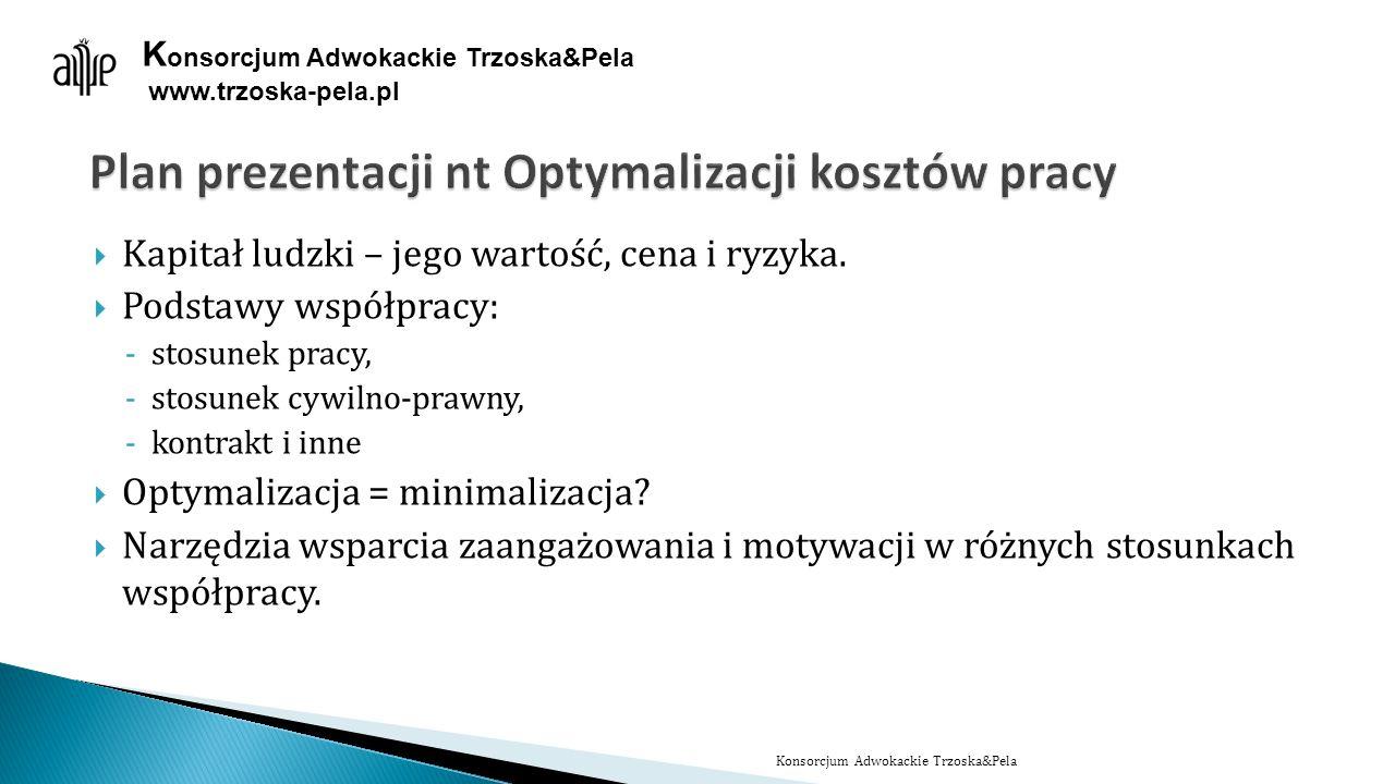 Plan prezentacji nt Optymalizacji kosztów pracy