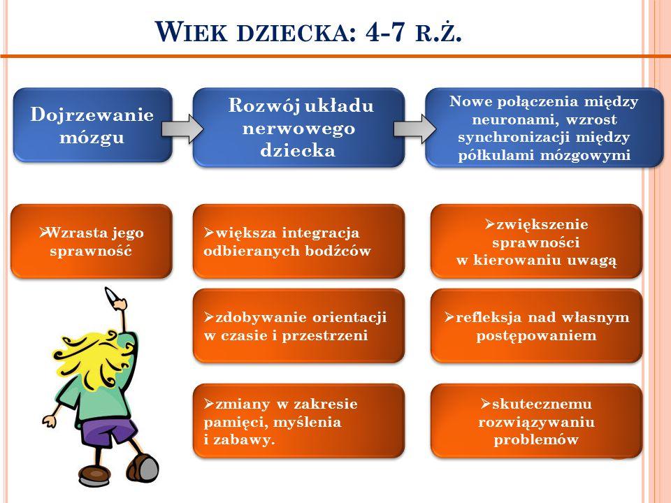 Wiek dziecka: 4-7 r.ż. Rozwój układu nerwowego dziecka