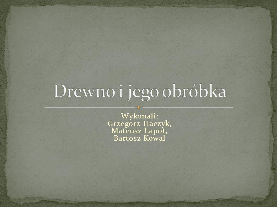 Wykonali: Grzegorz Haczyk, Mateusz Łapot, Bartosz Kowal