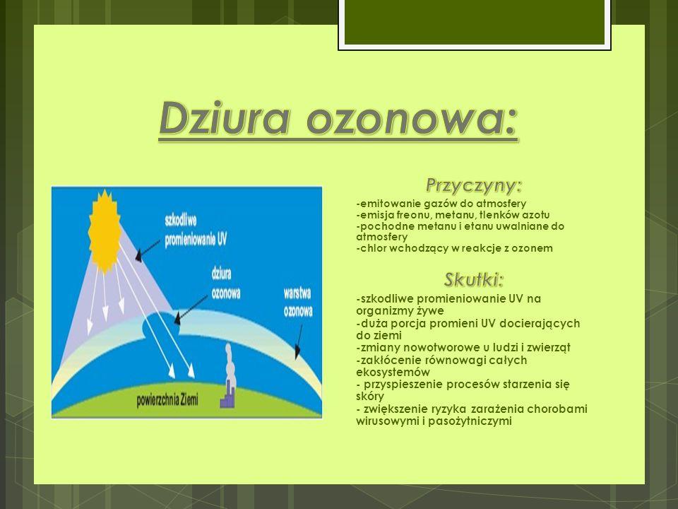 Dziura ozonowa: Przyczyny: Skutki: