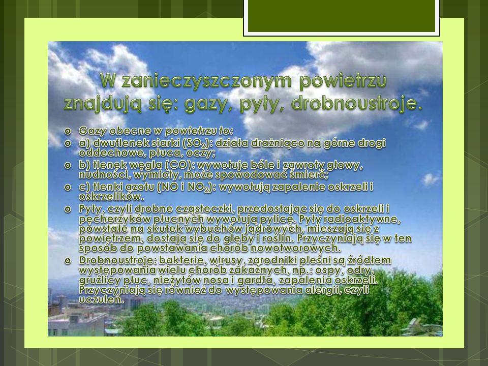 W zanieczyszczonym powietrzu znajdują się: gazy, pyły, drobnoustroje.