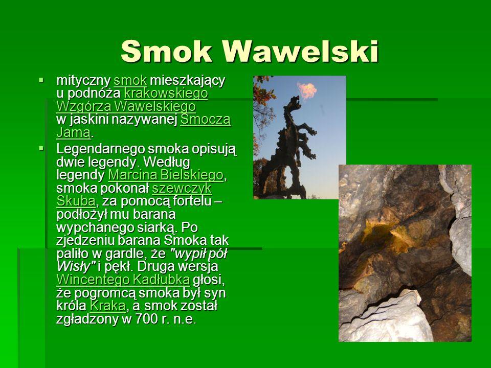Smok Wawelski mityczny smok mieszkający u podnóża krakowskiego Wzgórza Wawelskiego w jaskini nazywanej Smoczą Jamą.