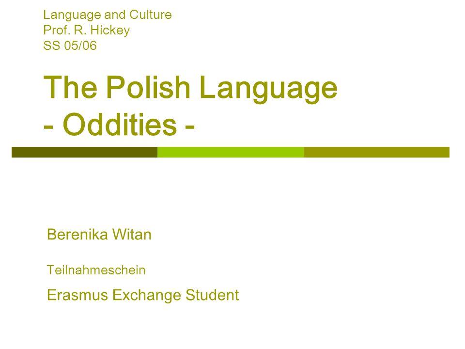 Berenika Witan Teilnahmeschein Erasmus Exchange Student