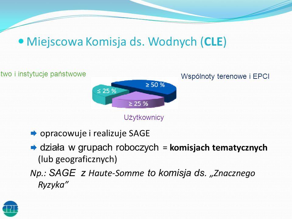 Miejscowa Komisja ds. Wodnych (CLE)
