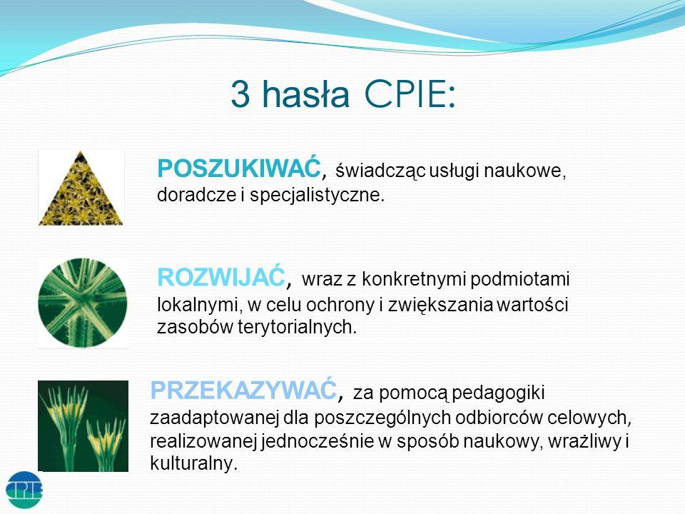 3 hasła CPIE: POSZUKIWAĆ, świadcząc usługi naukowe, doradcze i specjalistyczne.
