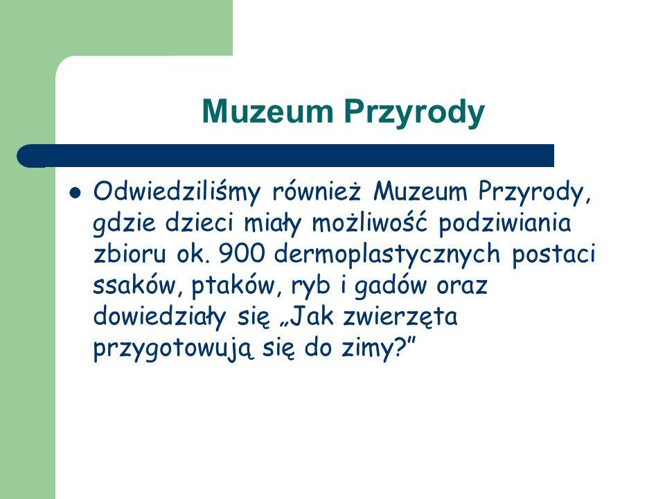 Muzeum Przyrody