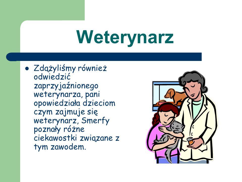 Weterynarz
