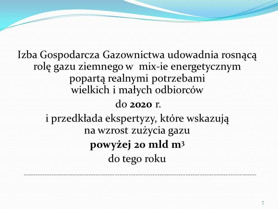 Izba Gospodarcza Gazownictwa udowadnia rosnącą rolę gazu ziemnego w mix-ie energetycznym popartą realnymi potrzebami wielkich i małych odbiorców do 2020 r. i przedkłada ekspertyzy, które wskazują na wzrost zużycia gazu powyżej 20 mld m3 do tego roku