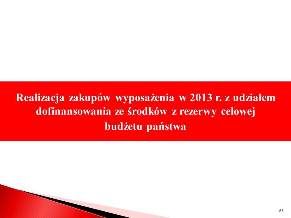 Realizacja zakupów wyposażenia w 2013 r