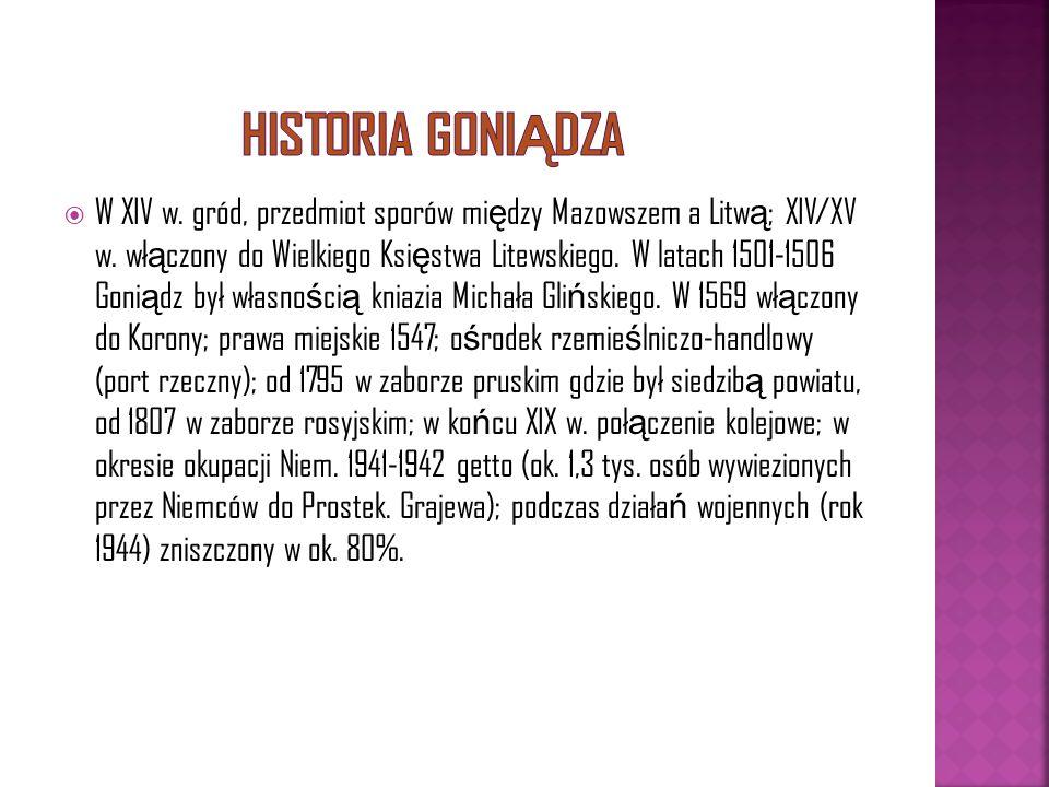Historia Goniądza