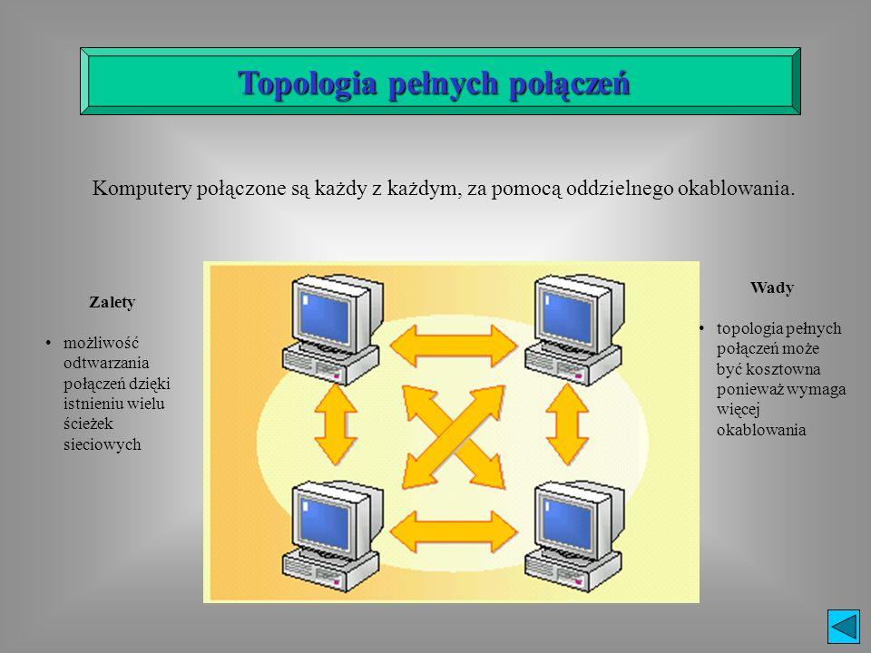 Topologia pełnych połączeń