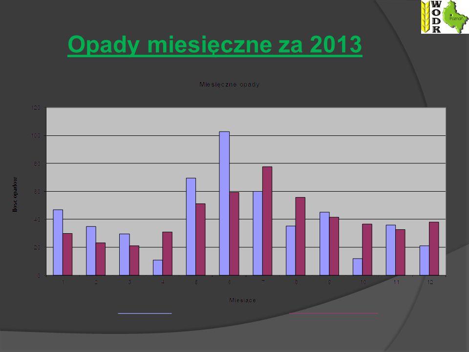 Opady miesięczne za 2013