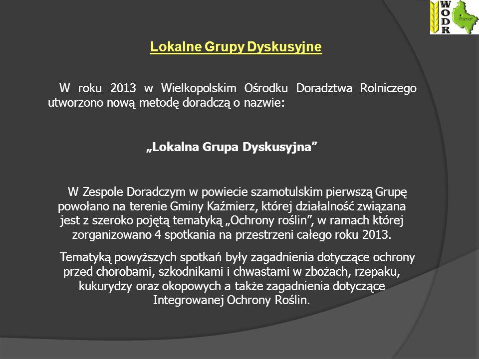 "Lokalne Grupy Dyskusyjne ""Lokalna Grupa Dyskusyjna"