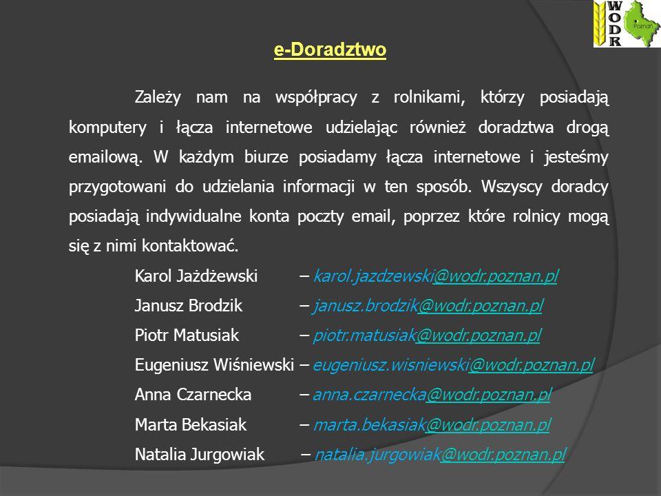 e-Doradztwo