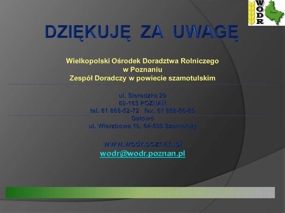 DZIĘKUJĘ ZA UWAGĘ www.wodr.poznan.pl wodr@wodr.poznan.pl