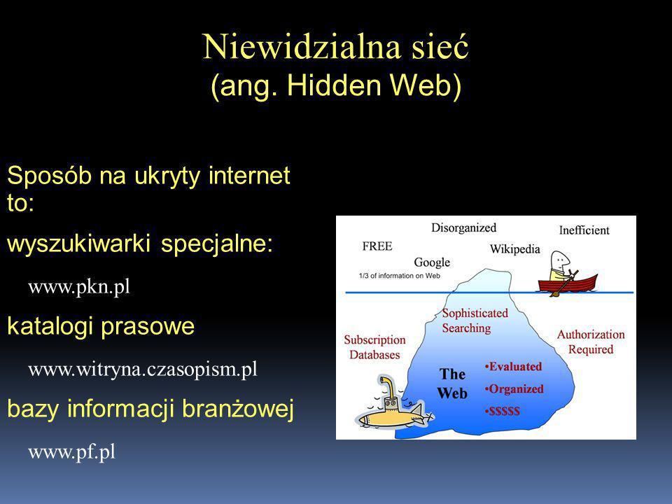 Niewidzialna sieć (ang. Hidden Web)