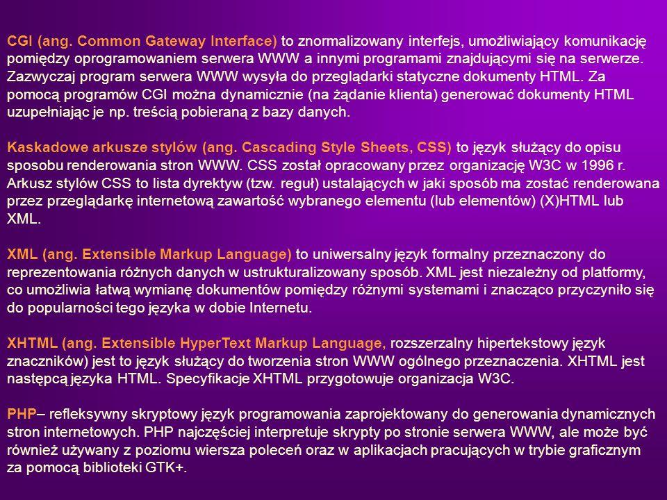 CGI (ang. Common Gateway Interface) to znormalizowany interfejs, umożliwiający komunikację pomiędzy oprogramowaniem serwera WWW a innymi programami znajdującymi się na serwerze. Zazwyczaj program serwera WWW wysyła do przeglądarki statyczne dokumenty HTML. Za pomocą programów CGI można dynamicznie (na żądanie klienta) generować dokumenty HTML uzupełniając je np. treścią pobieraną z bazy danych.