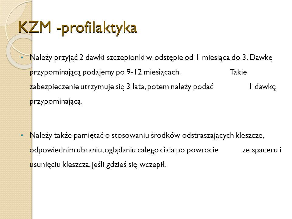 KZM -profilaktyka
