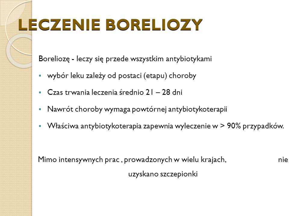 LECZENIE BORELIOZY Boreliozę - leczy się przede wszystkim antybiotykami. wybór leku zależy od postaci (etapu) choroby.