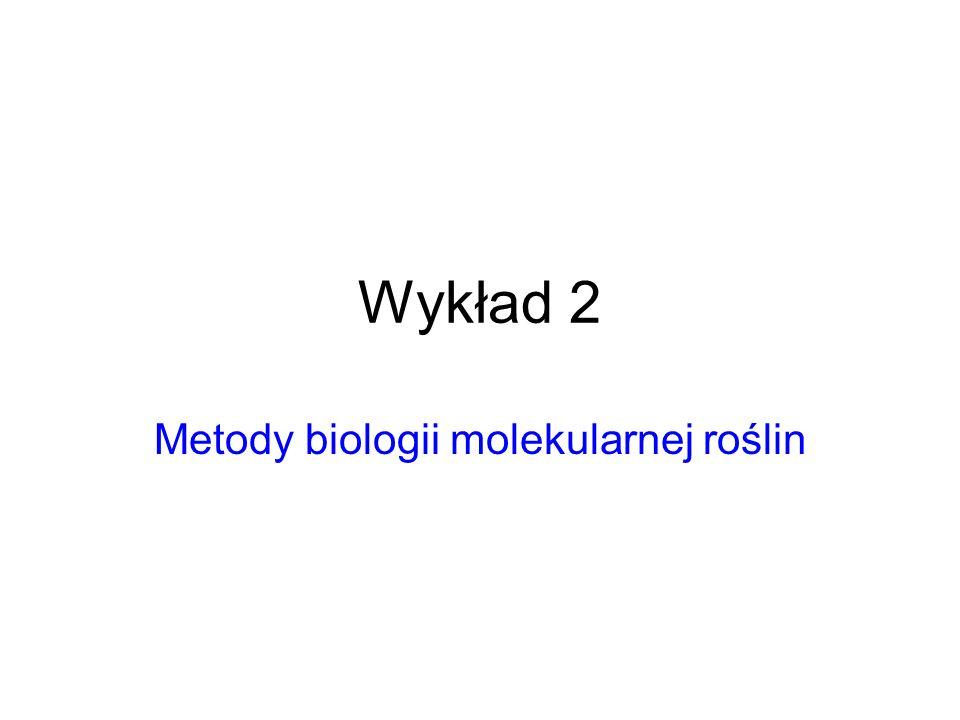 Metody biologii molekularnej roślin
