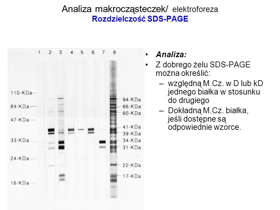 Analiza makrocząsteczek/ elektroforeza Rozdzielczość SDS-PAGE