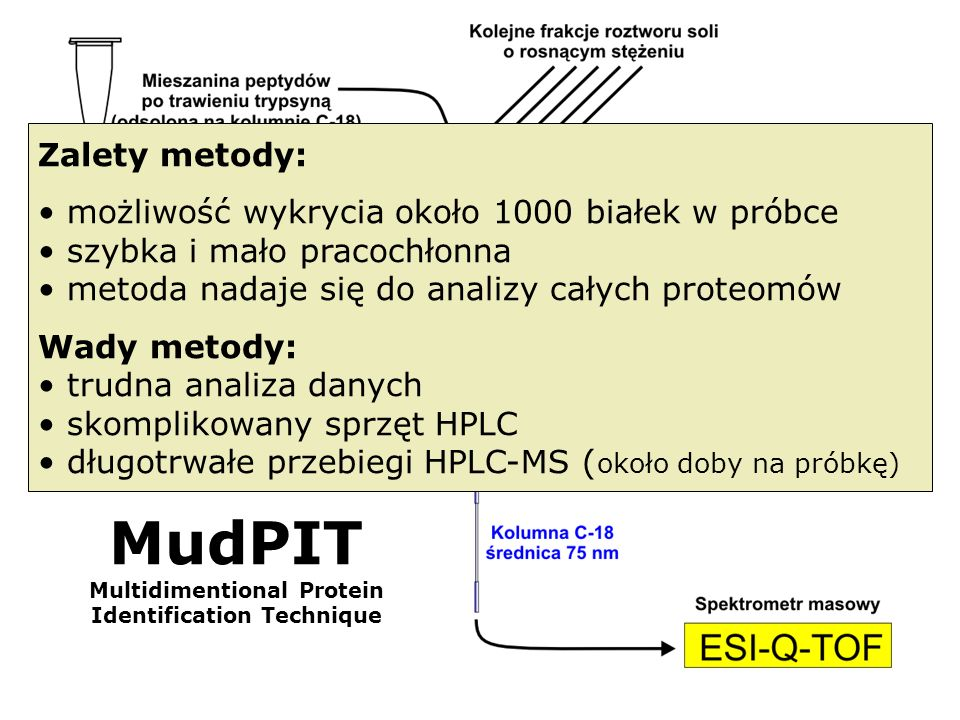 MudPIT Multidimentional Protein Identification Technique