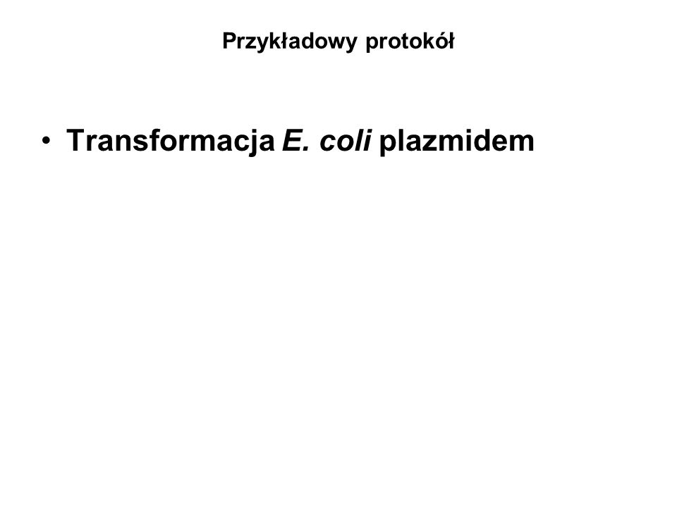 Transformacja E. coli plazmidem