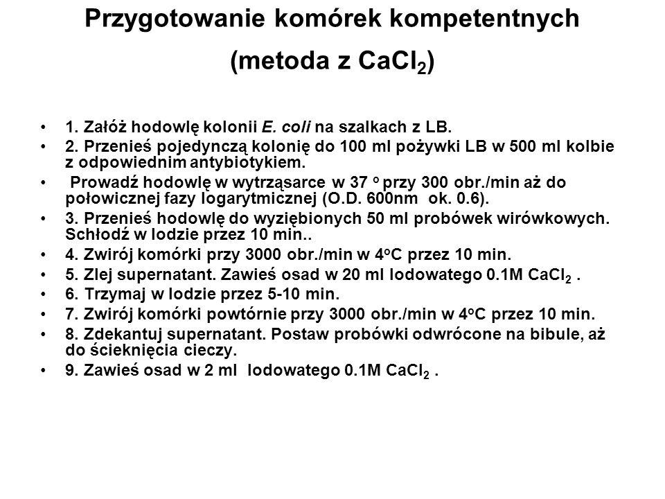 Przygotowanie komórek kompetentnych (metoda z CaCl2)