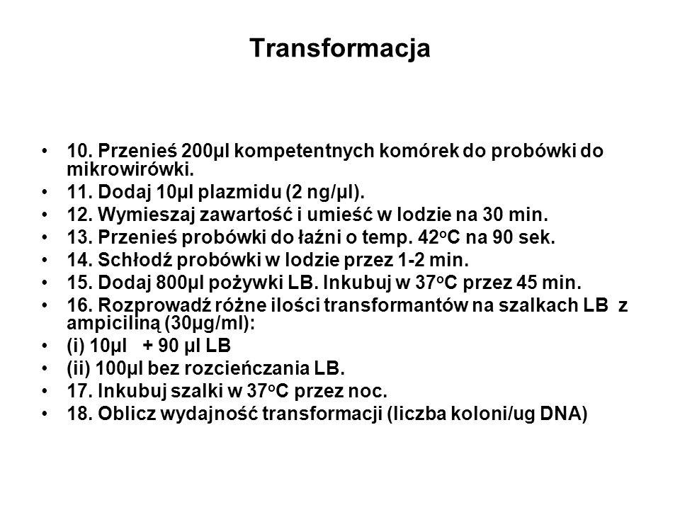 Transformacja 10. Przenieś 200µl kompetentnych komórek do probówki do mikrowirówki. 11. Dodaj 10µl plazmidu (2 ng/µl).