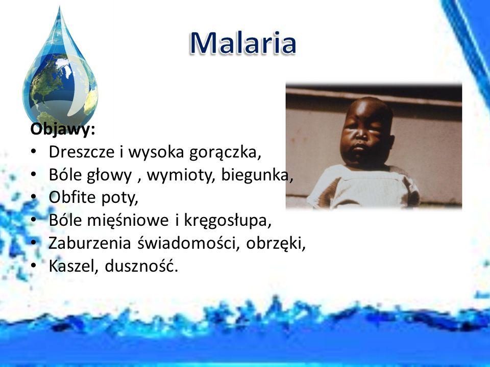 Malaria Objawy: Dreszcze i wysoka gorączka,