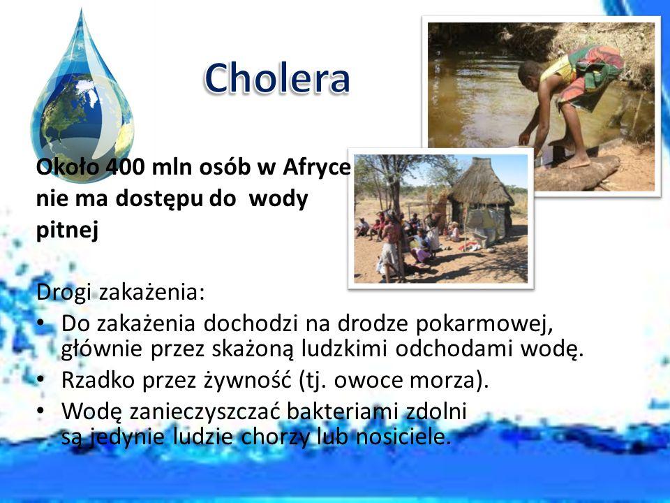 Cholera Około 400 mln osób w Afryce nie ma dostępu do wody pitnej