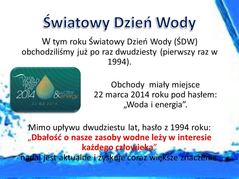 """Obchody miały miejsce 22 marca 2014 roku pod hasłem: """"Woda i energia ."""