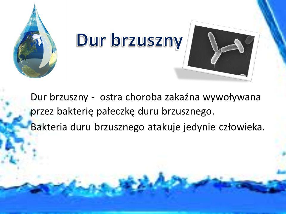 Dur brzuszny Dur brzuszny - ostra choroba zakaźna wywoływana przez bakterię pałeczkę duru brzusznego.