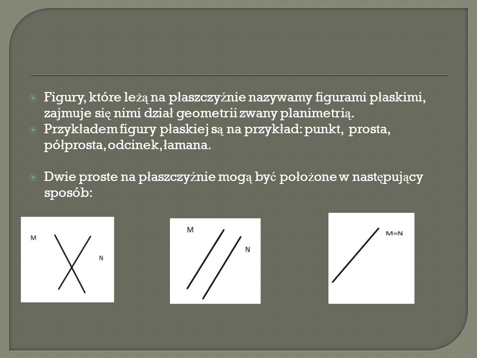 Figury, które leżą na płaszczyźnie nazywamy figurami płaskimi, zajmuje się nimi dział geometrii zwany planimetrią.