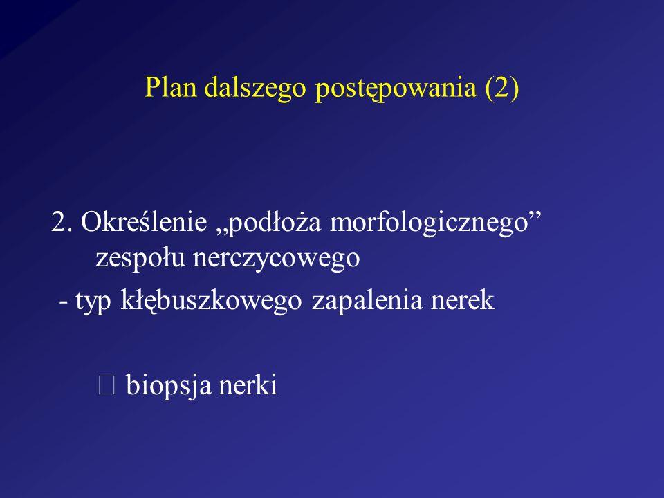 Plan dalszego postępowania (2)