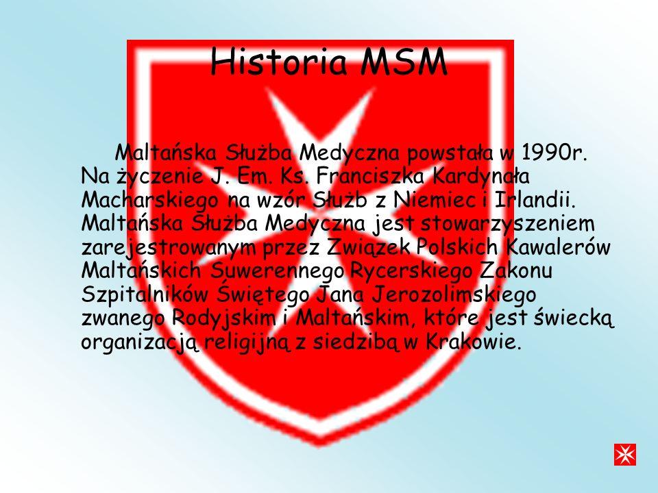 Historia MSM