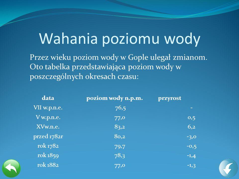 Wahania poziomu wody Przez wieku poziom wody w Gople ulegał zmianom. Oto tabelka przedstawiająca poziom wody w poszczególnych okresach czasu: