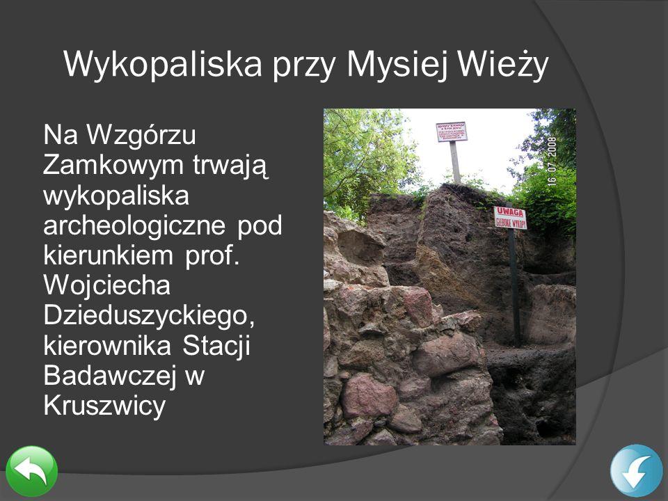 Wykopaliska przy Mysiej Wieży
