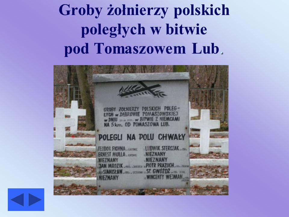 Groby żołnierzy polskich poległych w bitwie pod Tomaszowem Lub.
