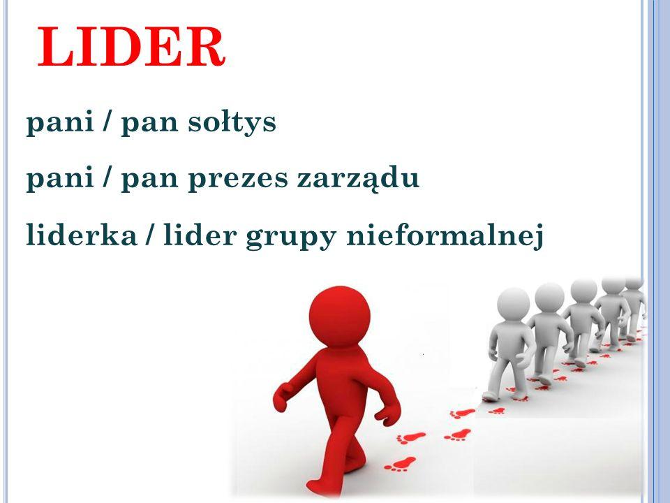 lider pani / pan sołtys pani / pan prezes zarządu liderka / lider grupy nieformalnej